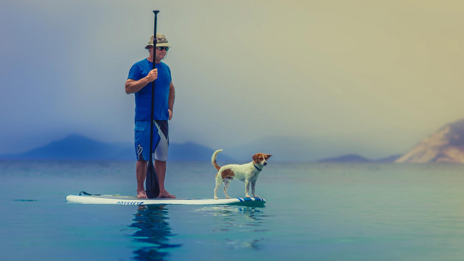 2 person ocean kayak, tandem ocean kayak, paddles kayak, angler kayak kayak, retailers ocean kayak, malibu, fishing kayak, sit on top kayak
